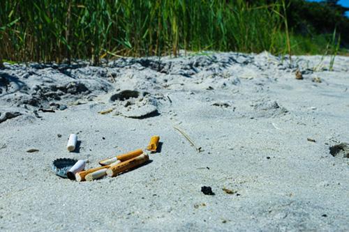 Cleanwalk cleanup nettoyage des plages déchets mégots