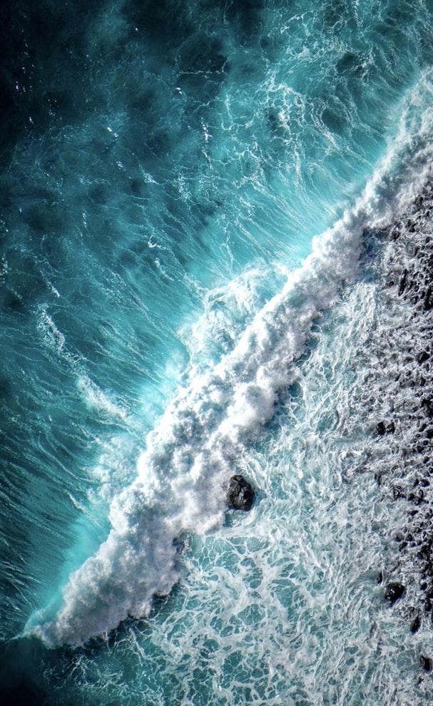 O'DYSSEY Free Spirit plongée sous marine équipe aquatique