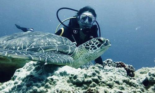 O'dyssey protection des océans