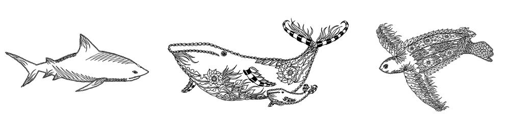 O'dyssey marine wildlife